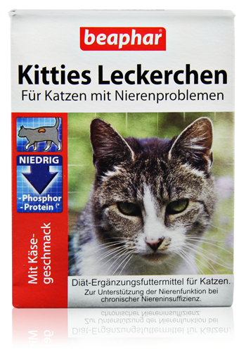 Kitties Leckerchen